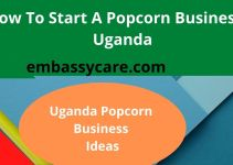 How To Start Popcorn Business In Uganda – Lucrative Business Ideas