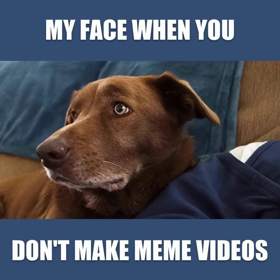How To Make A Meme Video Tricks Ideas And Templates Wave