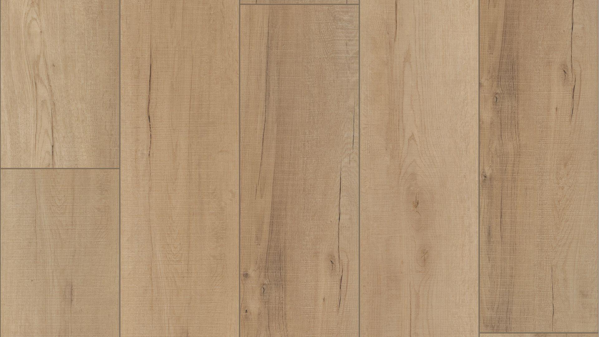 calypso oak