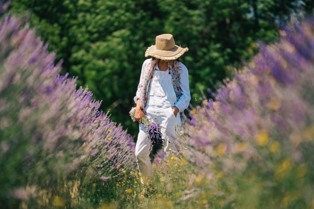 best lavender farms near Portland Oregon