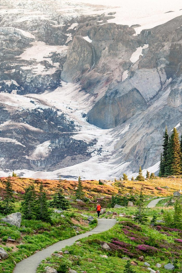13 Jaw-Dropping Hikes at Mt. Rainier National Park (+Tips & Photos)