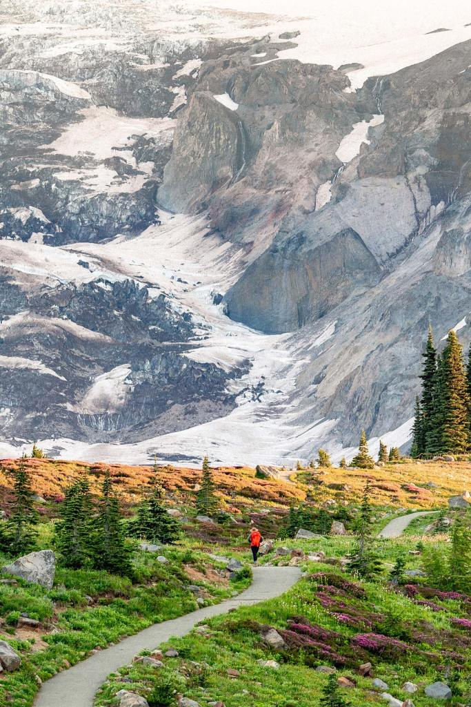10 Jaw-Dropping Things to Do at Mt. Rainier National Park