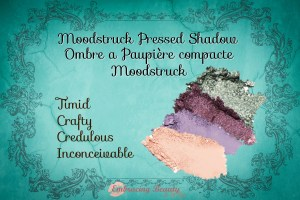 Younique Custom Palettes Embracing Beauty with Kim Willis Moodstruck Pressed Shadow Look 10