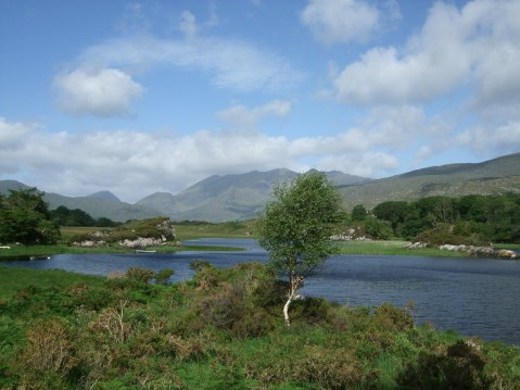 National Park, Killarney