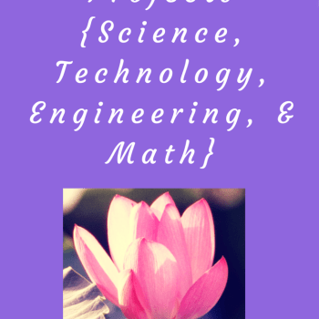 Summer STEM Projects {Science, Technology, Engineering, & Math}