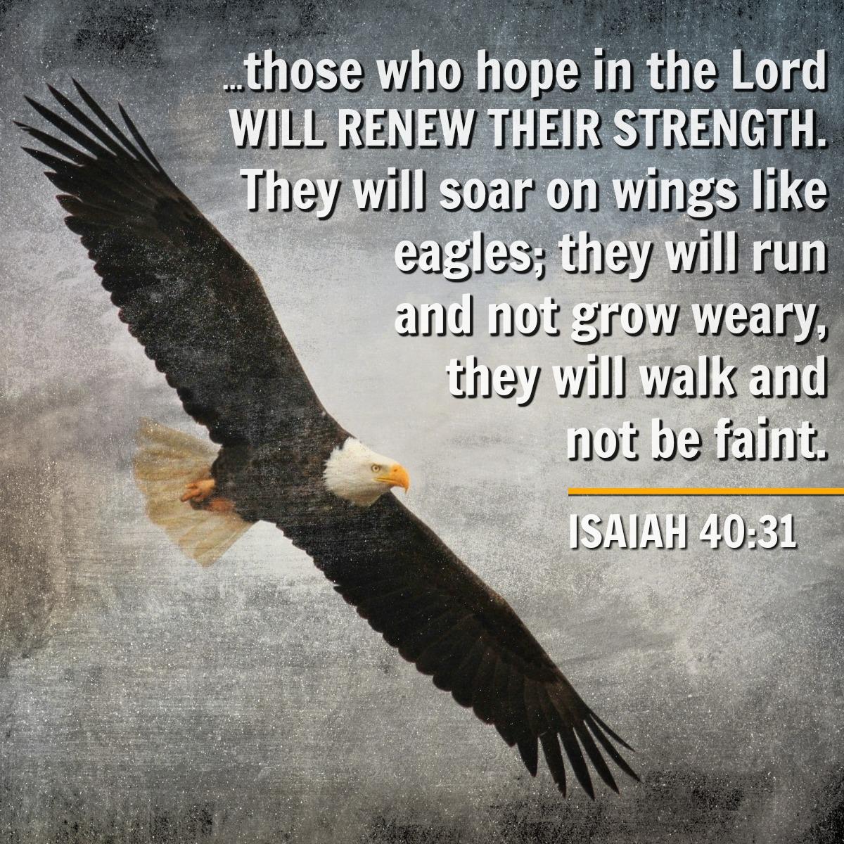 Isaiah 40 31 Inspirational Scripture