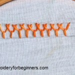 plaited fly stitch
