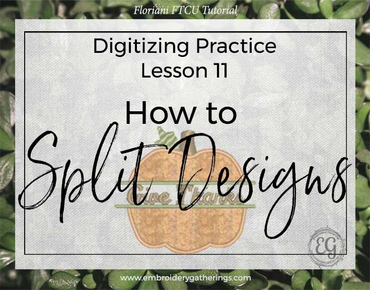 Floriani FTCU-Practice Lesson 11-Applique split pumpkin