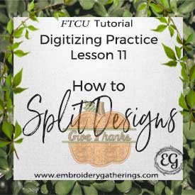 FTCU Digitizing Practice Lesson 11