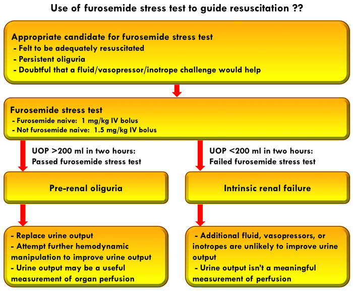 Renal Failure Concept Map.Pulmcrit Could The Furosemide Stress Test Clarify Resuscitative Goals