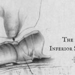 EM Nerd-The Case of the Inferior Superiority