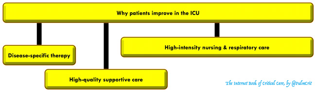 Guide to supportive care in critical illness - EMCrit Project