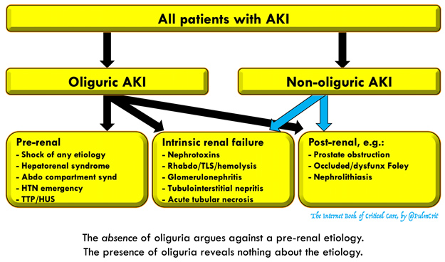 Acute Kidney Injury Emcrit Project