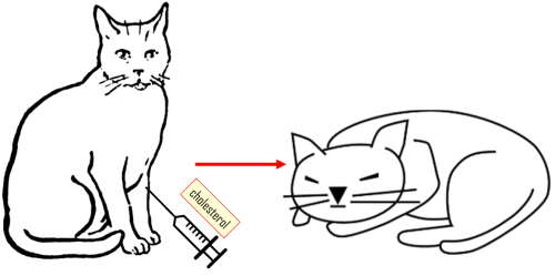 Figure 10. [http://clipart-library.com/free-cat-images.html],[http://clipart-library.com/clipart/464619.htm]