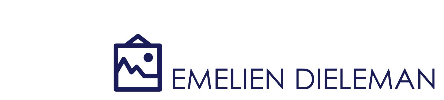 Emelien Dieleman l Visual Arts