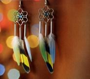 boulces-oreilles-plumes-perruches-diy-dreamcatcher (2)