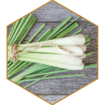 Lemongrass Natural Hair Ingredient | Difference Between Dandruff Psoriasis and Itchy Scalp