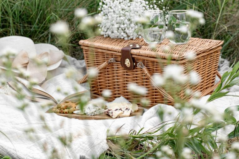 Picnic basket in the grass with wine, cheese and a book
