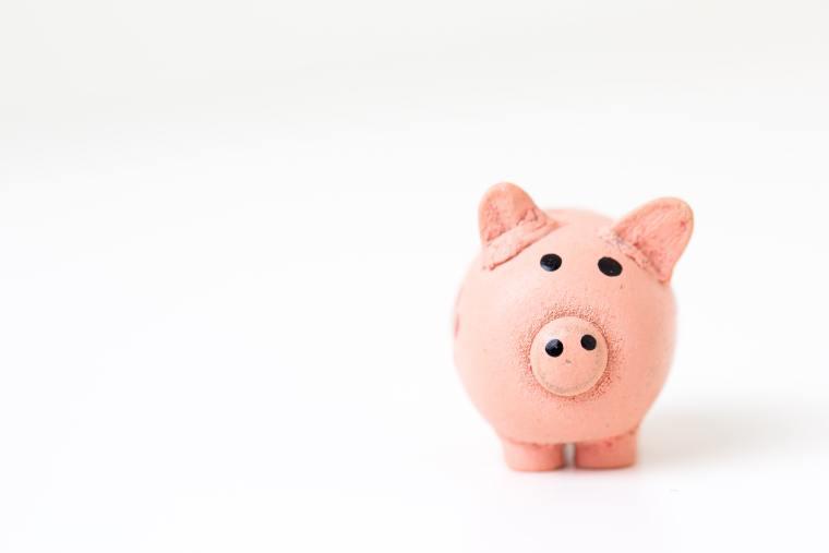 Cute wee pink piggy bank
