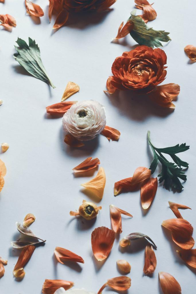 Orange flowers and petals are scattered across a white table