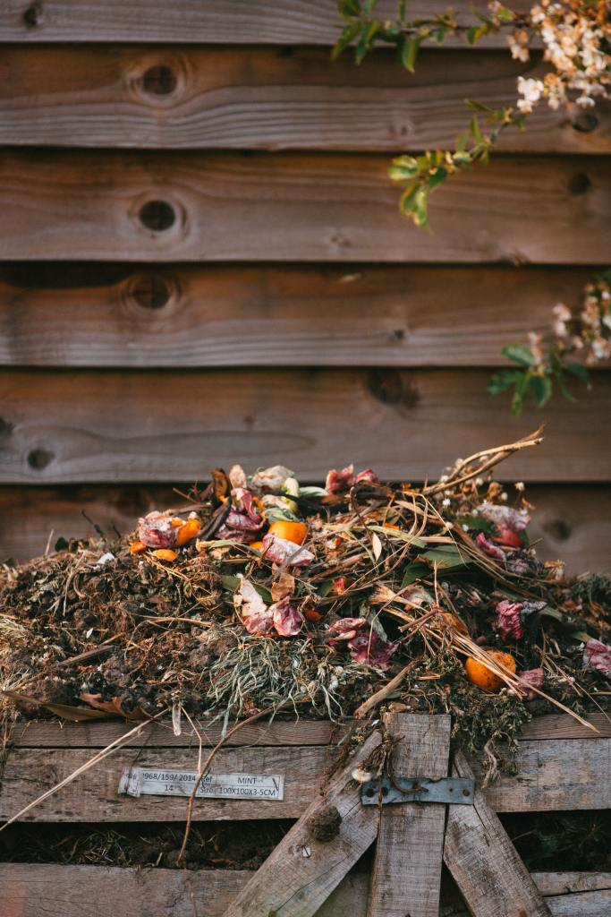 A bunch of flowers sits deconstructed atop a compost heap, the background an old weatherboard wall.