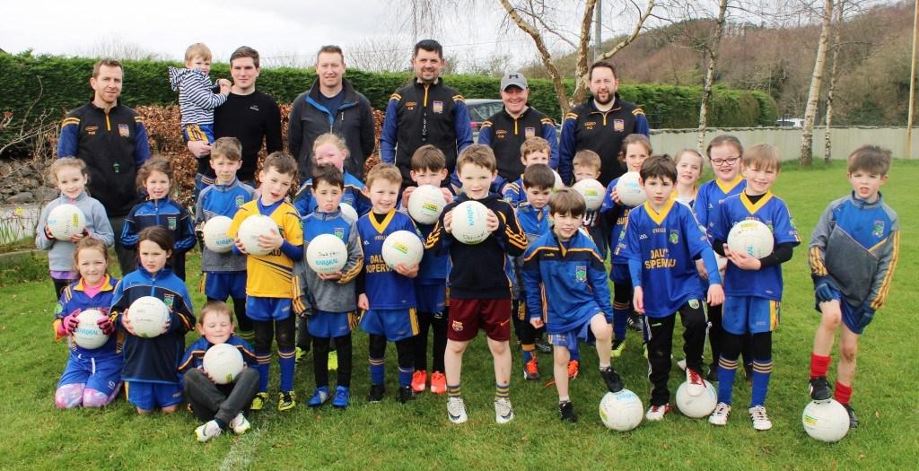 Spa GAA Under-8 Gaelic Football Team group photo