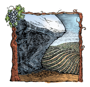 Shelter Rock Winery logo image