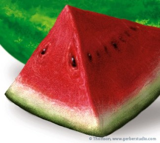 watermelondetail