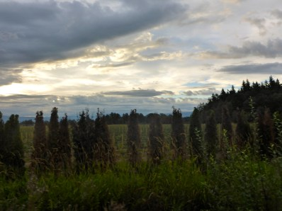 Fascinating skies heading out of Bellingham on Day 2