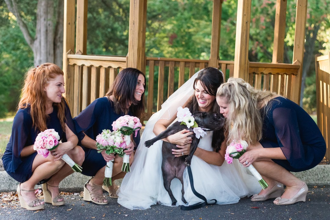 WEDDING DOG PHOTOS-3