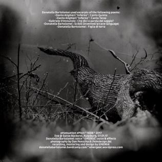 natura morta - I_rear