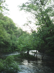 Ox Ford at the North Anna River, downriver from Jericho Mills