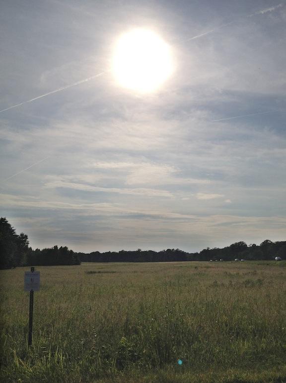 SunOverFairview