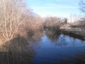 Rowanty Creek