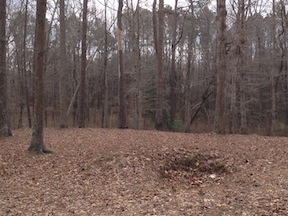 Confederate rifle pits still dot the landscape.