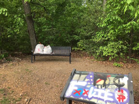 Trash Park 03-after