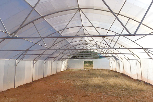 200um plastic, single span greenhouse tunnel