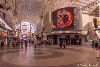 The Freemont Street Experiance