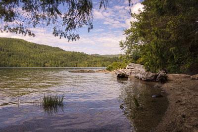 photo of the lake shore
