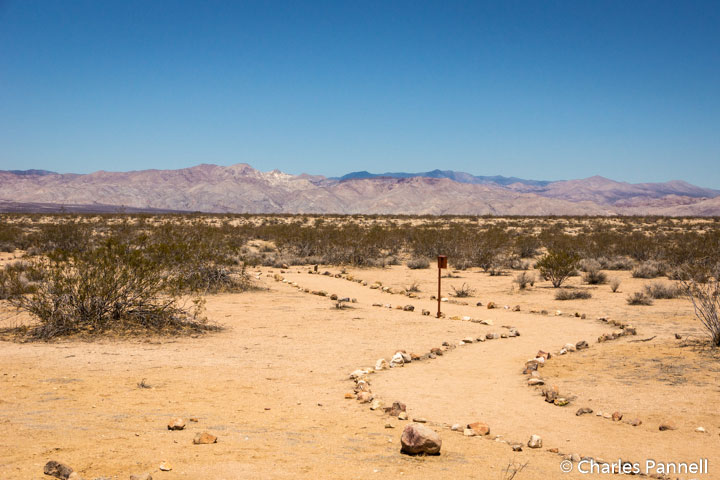 Interpretive trail at the Desert Tortoise Natural Area