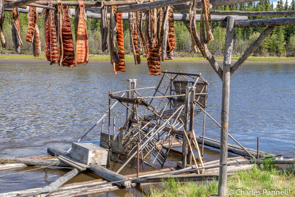 Drying salmon and fish trap at the Chena Indian Village