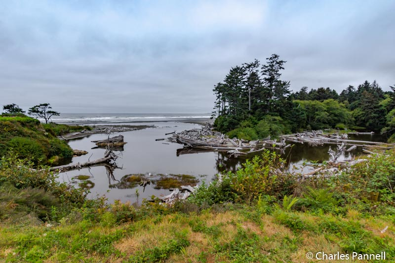 Outlet of Kalaloch Creek in Olympic National Park