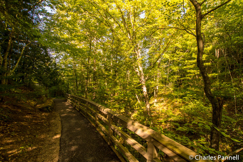 Trail to Munising Falls