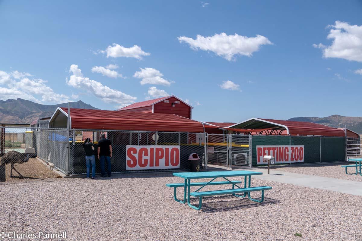 The Scipio Petting Zoo in Scipio, Utah