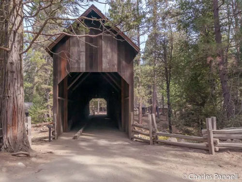 Offbeat Yosemite: Six Fun and Funky Accessible Finds