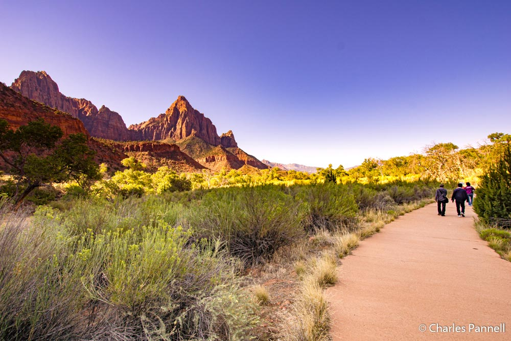 Wheelchair accessible Pa'rus Trail in Zion National Park
