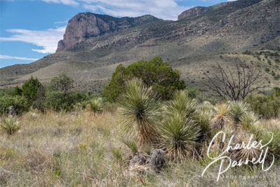Discover Historic Guadalupe Mountains National Park
