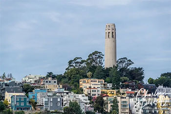 From a bay cruise to an accessible trail, and even an aquarium, there are lots of choices for wheelchair-users and slow walkers in San Francisco. Rolling Around San Francisco