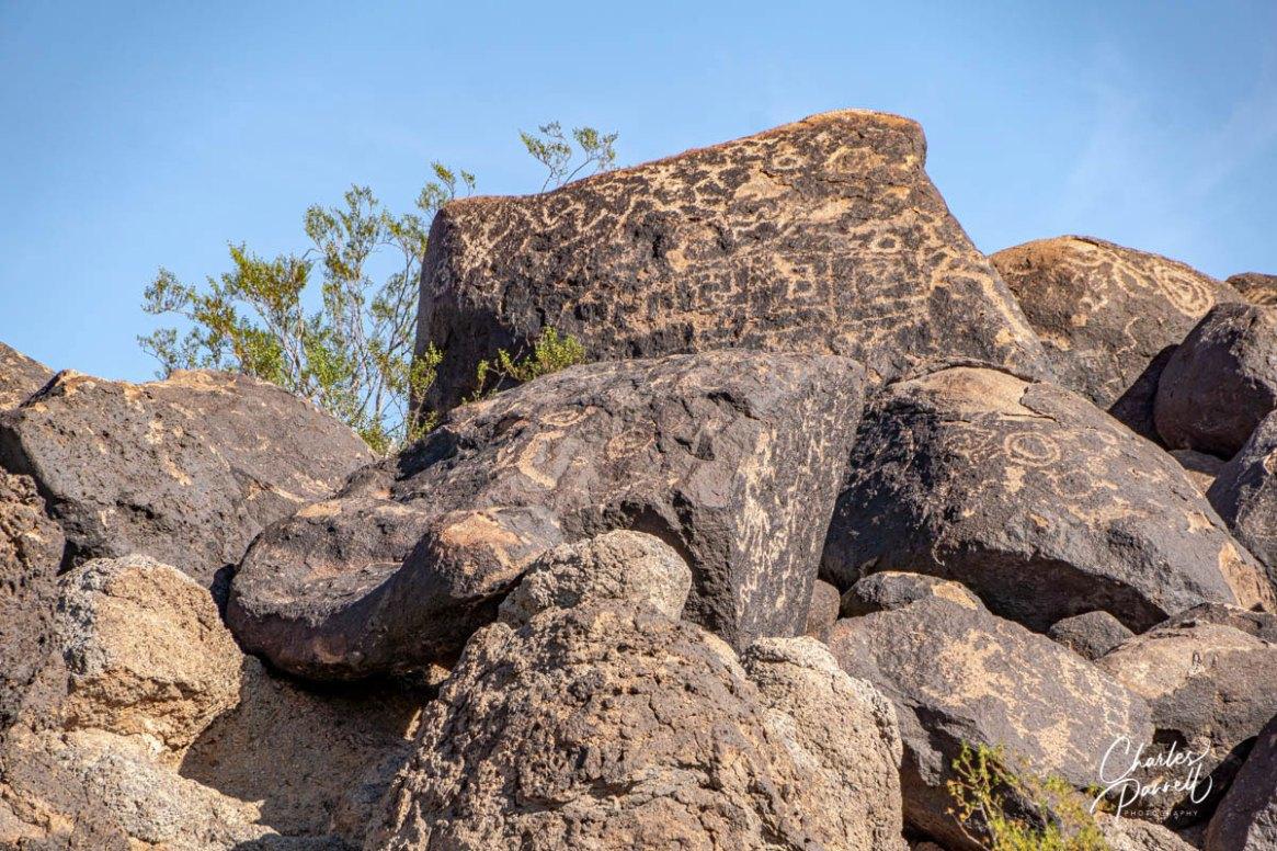 wheelchair-accessible petroglyphs; photo showing ancient petroglyphs on boulders