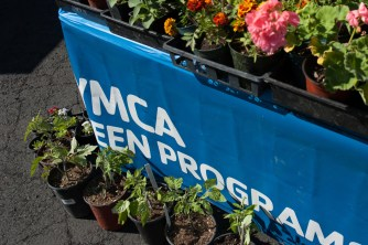 The YMCA teen program has lots of annuals and plant starts